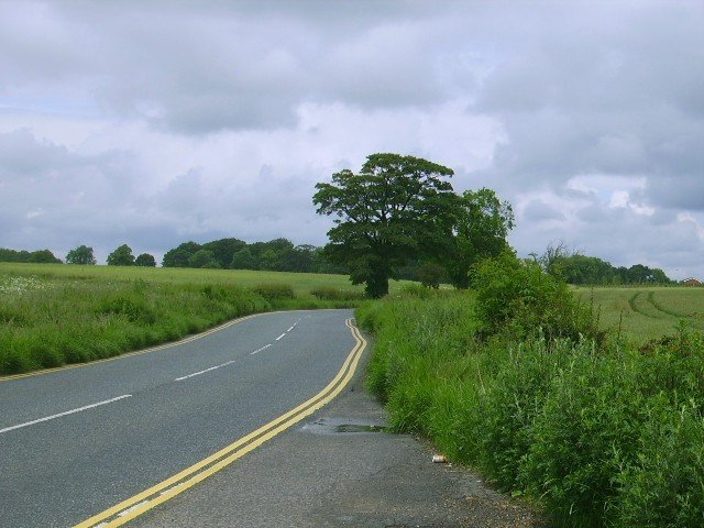 Lane/Road leading to Dinnington village