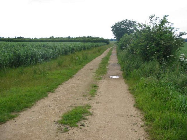 Track near Tickencote Warren