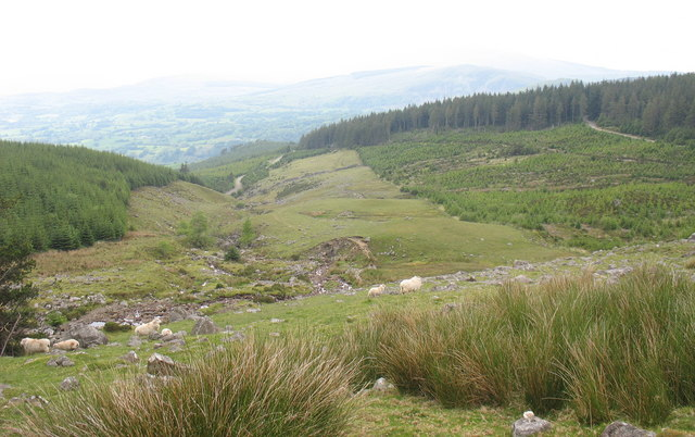 The middle valley of Afon Harnog