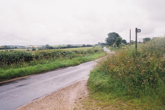Winterborne Whitechurch: the road to Winterborne Kingston