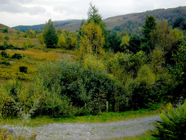 View near Achluachrach towards River Spean
