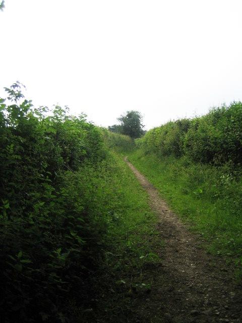 Track near Stride's Farm, Stony Batter
