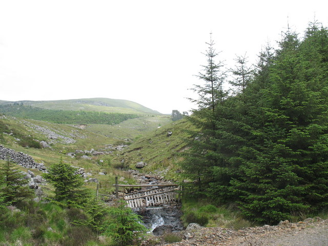 Afon Harnog from the forestry link road
