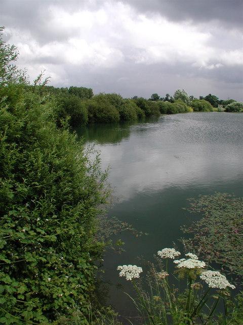 Lodge Lane Pond