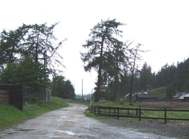 Keiloch sawmill