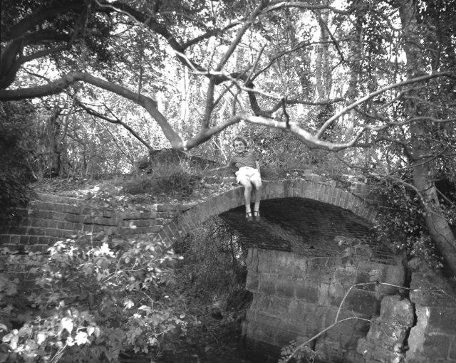 Pallingham Bridge, Wey and Arun Canal