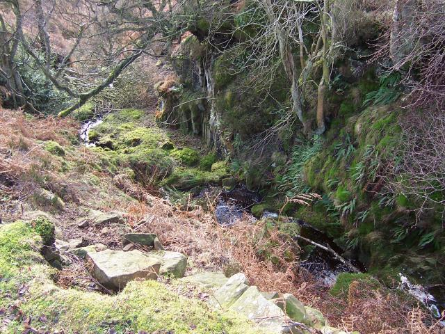 Unnamed stream flowing into Lower Barden Reservoir