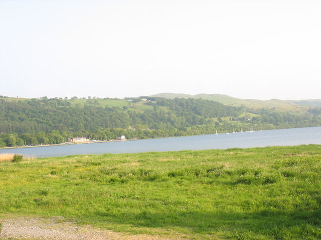 Wetland along the northern shore of Llyn Tegid