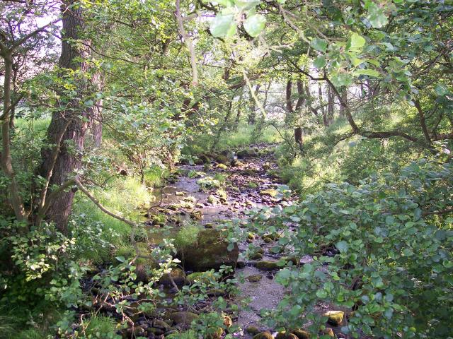 Kex Beck from the Footbridge