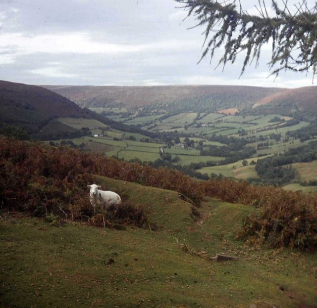 View up the Vale of Ewyas from near Upper House