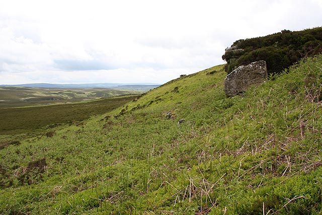 Bewick Moor