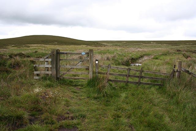 Bridleway, Bewick Moor