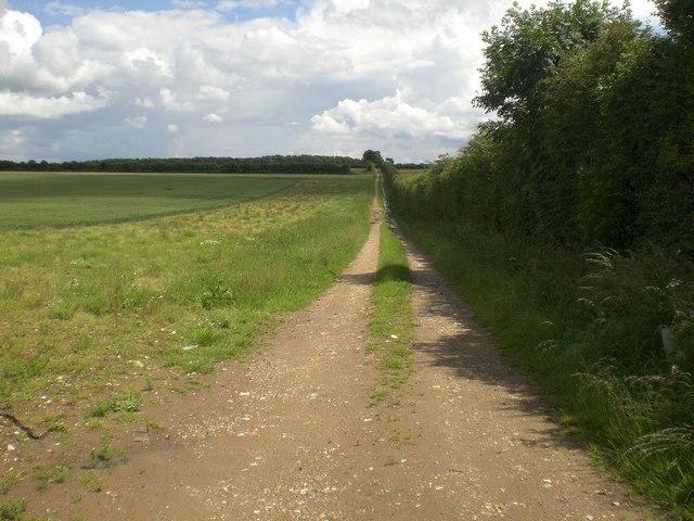 Track east of B1105