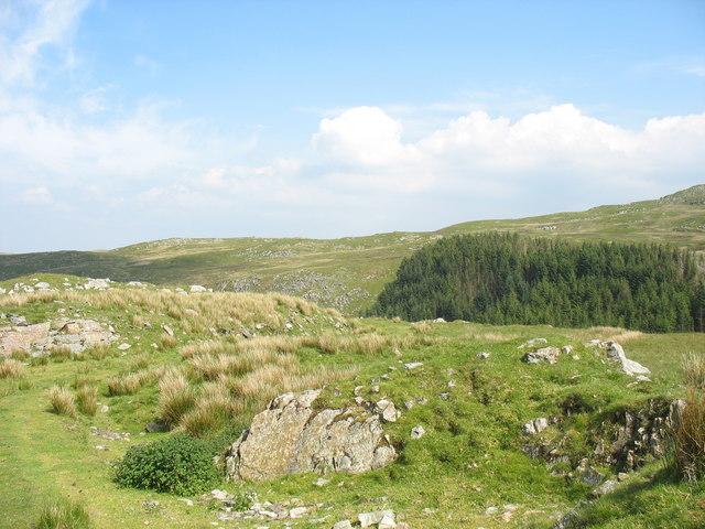 View across the Mawddach chasm to Braich y Dduallt