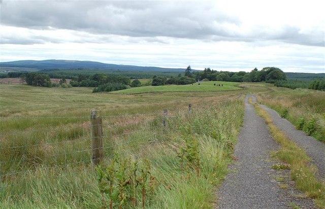 Towards Darnaconnar