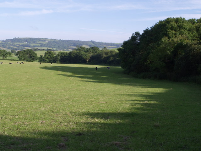 Field near Abbott's Wootton