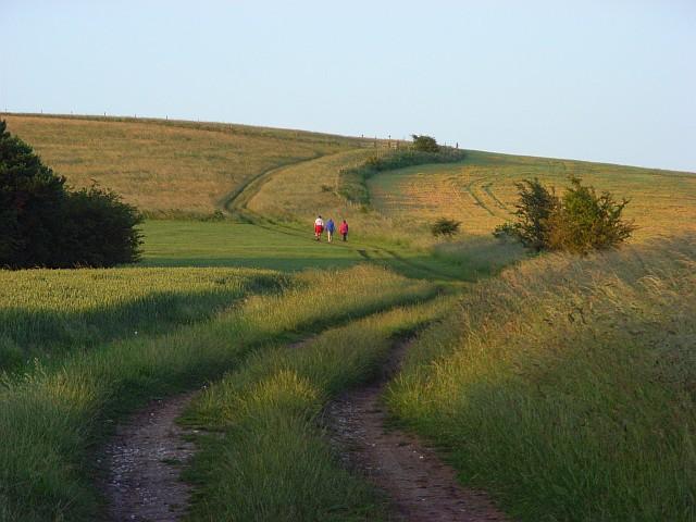 Lowbury Hill