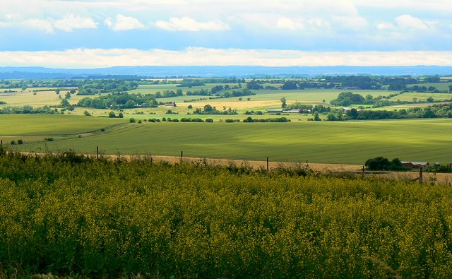 A view across North Wiltshire from the Ridgeway