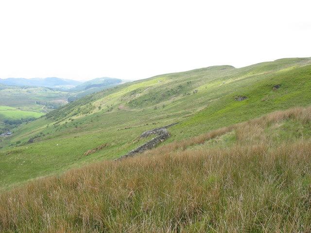 Wall separating ffridd and mountain at Bryn-llin-fawr Farm