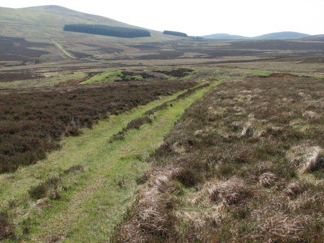 Path, Hare Hill