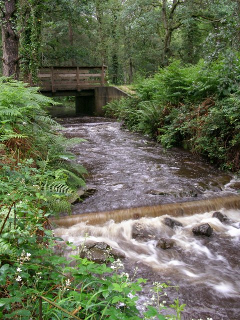 Weir on Latchmore Brook, Alderhill Inclosure, New Forest