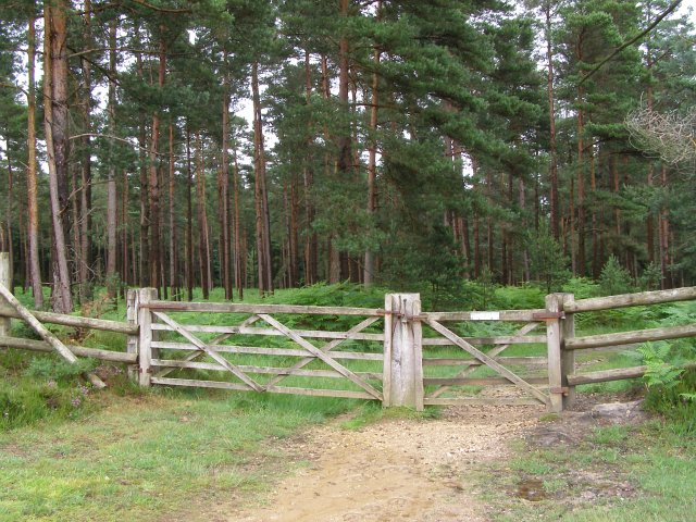 Northwest gateway to Alderhill Inclosure, New Forest