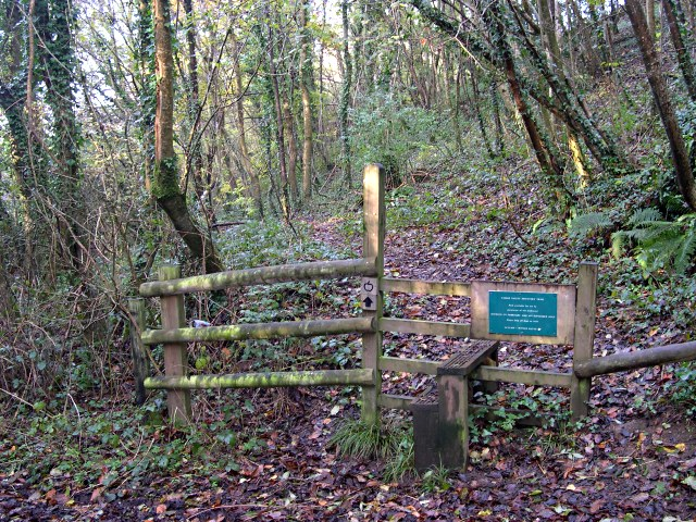Start of the Footpath through Blaxton Woods