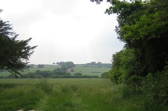 Roman road near East Tytherley