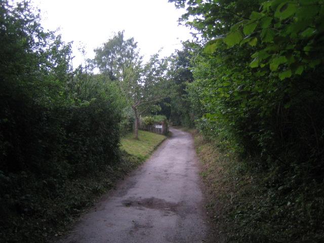 Bridleway near Chalk Pit Lane, West Tytherley