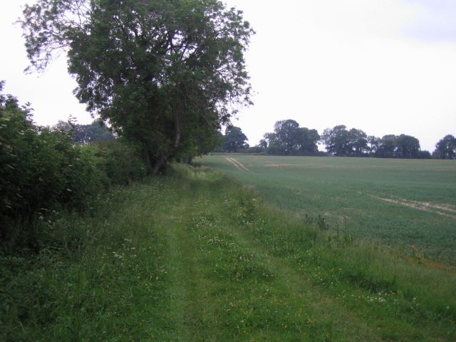 Path near Buckholt Farm