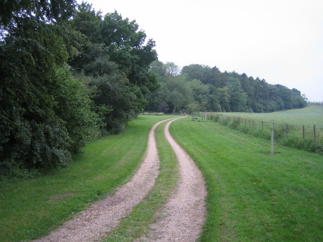 Driveway to Birchen Close Farm, Buckholt