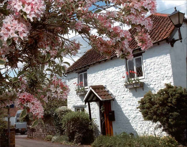 White Cottage, The Square, Alveston