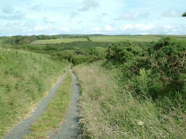 Country track, Nr. Gignog, Pembrokeshire