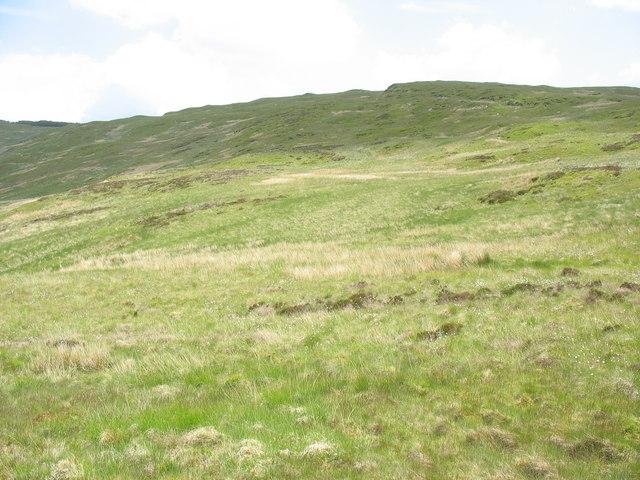Moel y Feidiog ridge