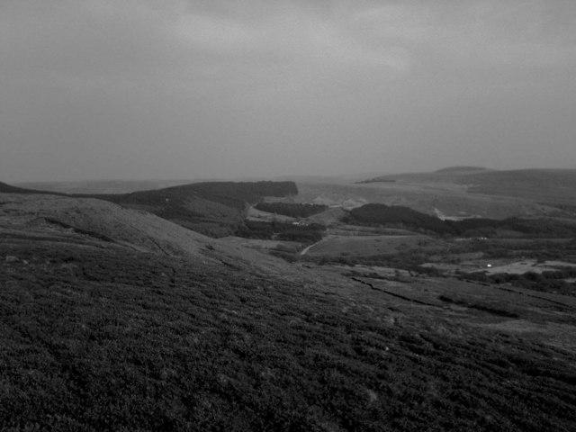 Mountain Side of Mynydd Bach