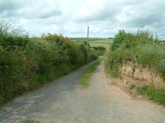 Lane leading to Knaveston, Gignog, Pembrokeshire