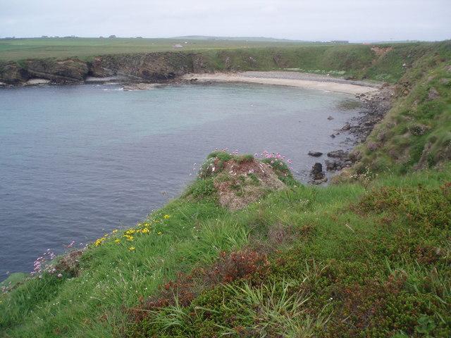 Head Bay