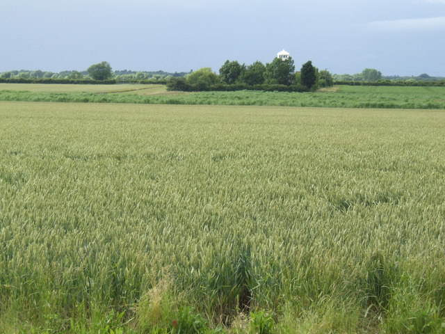 Hale Mill - over the fields