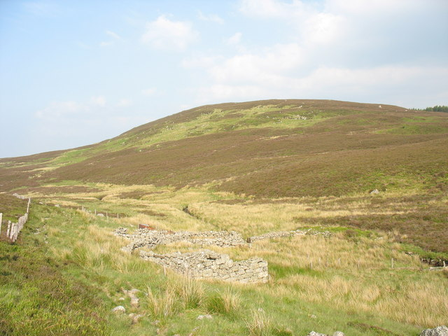 Sheepfold on the bank of Afon Fwy
