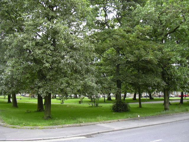 Grassed Square Queen Victoria Road