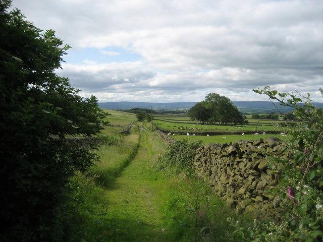 Wansdale Lane