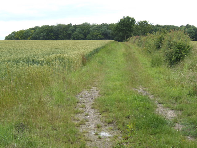 Footpath north