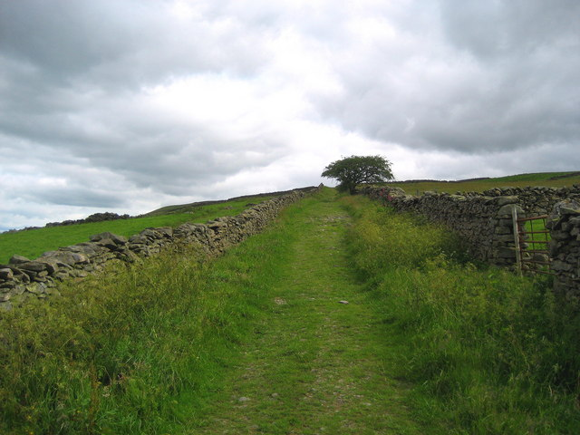 Track to Brownthwaite Pike
