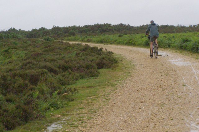 Wet cyclist heading for Frogham, Hampton Ridge, New Forest