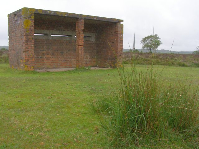 Observation shelter, Ashley Cross, New Forest