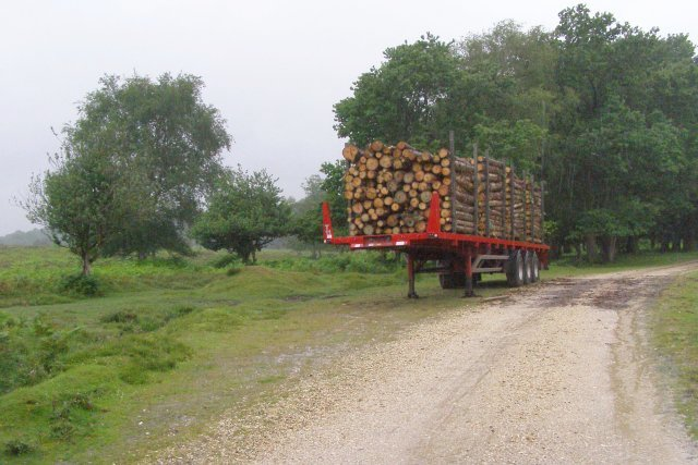 Timber trailer near Islands Thorns Inclosure, New Forest
