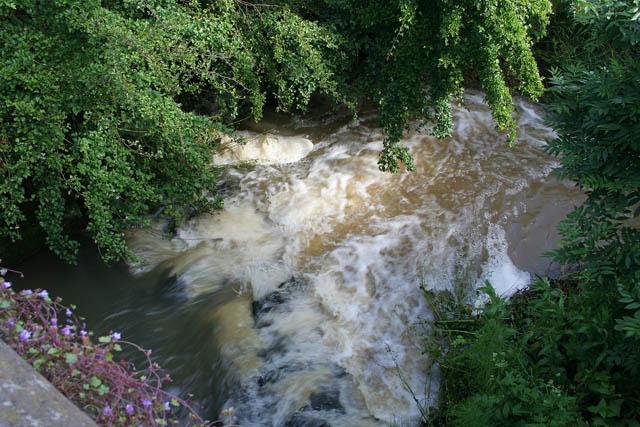 River Devon at Eaton