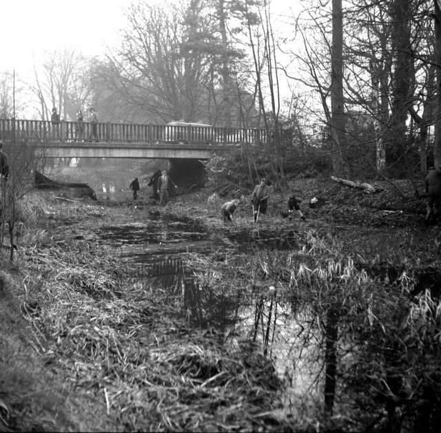 Reading Road Bridge, Basingstoke Canal, from the west