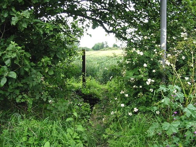 Hidden footpath
