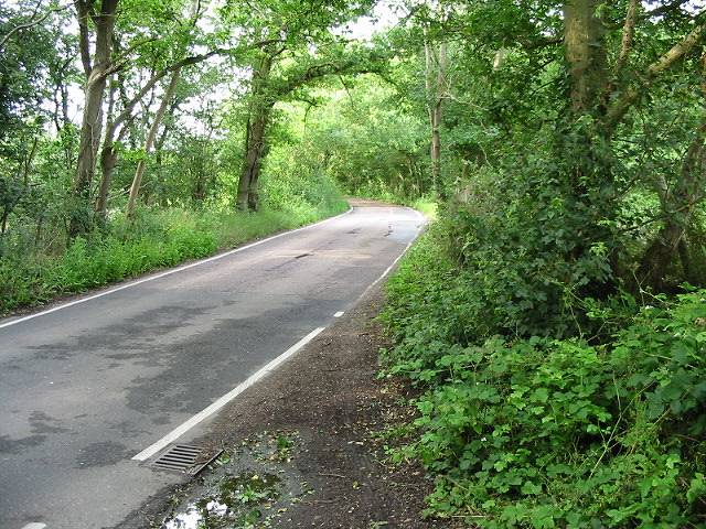 View along Thornden Wood Road